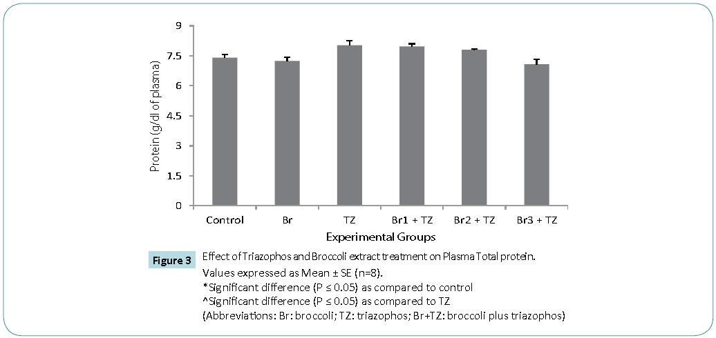 Biomedical-Sciences-Effect-Triazophos-Broccoli-extract-treatment-Plasma-Total-protein