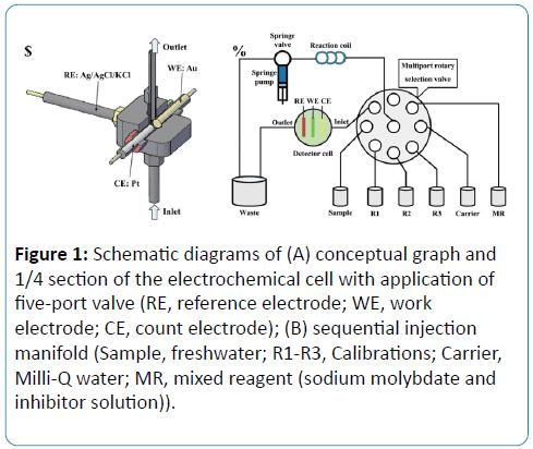 biomedical-sciences-Schematic-diagrams