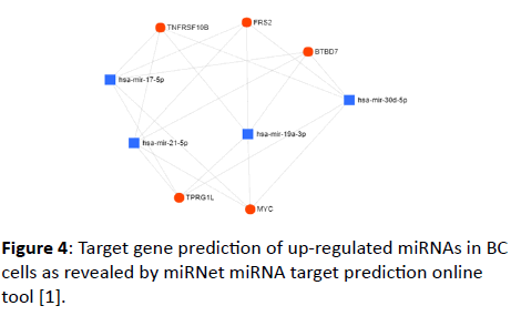 jbiomeds-Target-gene